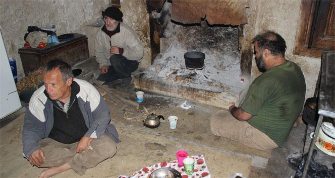 Üç kardeş virane evde yaşam mücadelesi veriyor