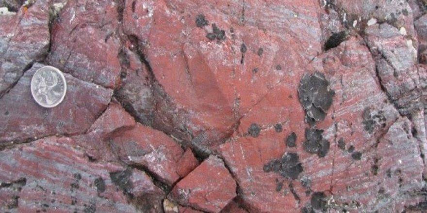 3,8 milyar yıl öncesine ait fosilleşmiş bakterilere rastladı.