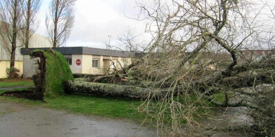 Fransa'da fırtına ölüme yol açtı