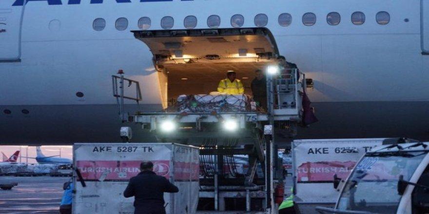 Türk Hava Yolları Çingene Kızı Mozaiği'ni Türkiye'ye Getirildi