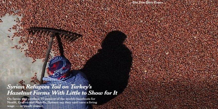 Dünya dış basını: Türkiye'den fındık almayın uyarısı yaptı