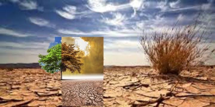Önlem alınmazsa Tarım alanları 10 yıl içinde yok olabilir