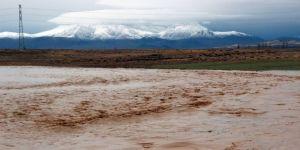 Karaman' da ekili araziler de sular altında kaldı