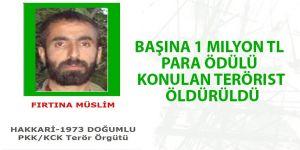 Başına 1 milyon TL para ödülü konulan terörist öldürüldü