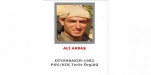 """Gri kategoride aranan """"Zinar Amed"""" kod adlı terörist Ali Akbaş etkisiz hale getirildi."""