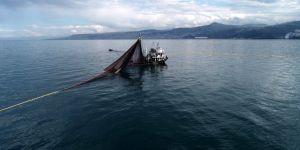 Karadeniz ve Marmara'daki dip balıkları çocuklara yedirmeyin