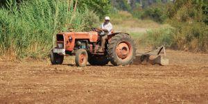 Çiftçilerin yüzde 61'inin geliri azaldı: ikinci bir  planları yok
