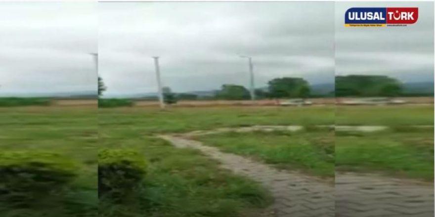 Bolu'da ata tecavüz eden sapık serbest bırakıldı